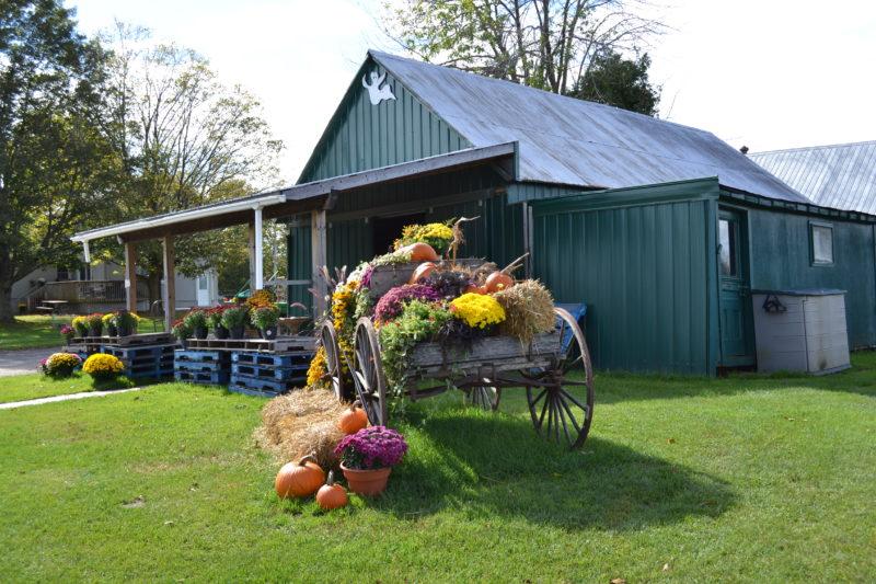 Miller's Farm Ottawa