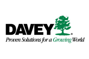 Barrhaven Tree Removal - Davey Tree Removal Service