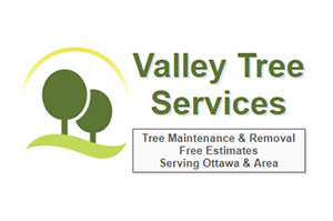 Barrhaven Tree Removal - Valley Tree Services