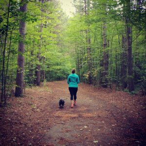 dog walking pinhey trail Barrhaven
